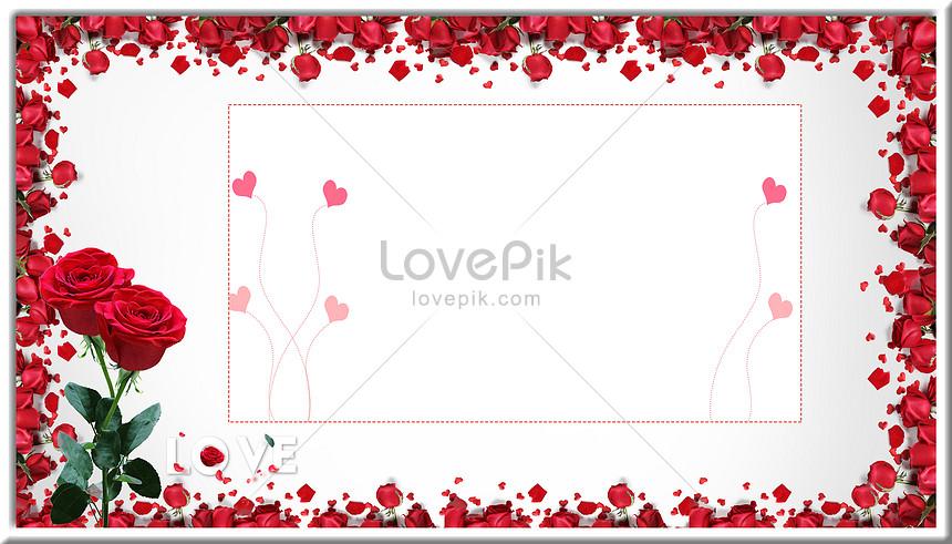 520 rose background