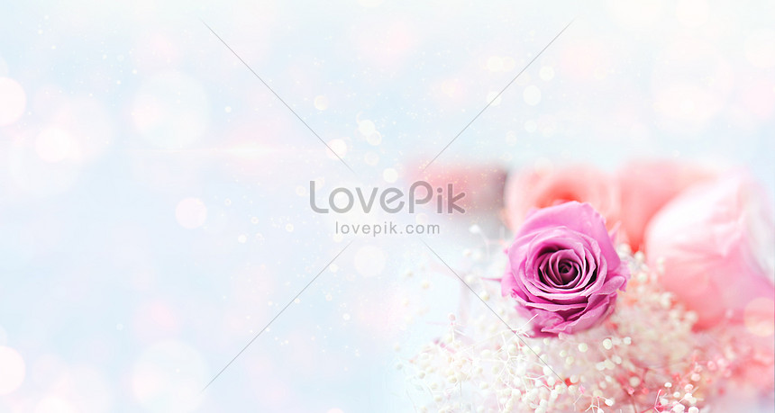 flower background posters