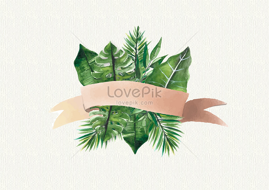 tropical plants of the leaf