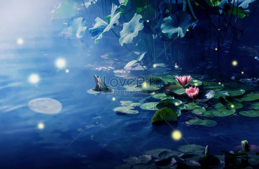 the lotus pool by moonlight