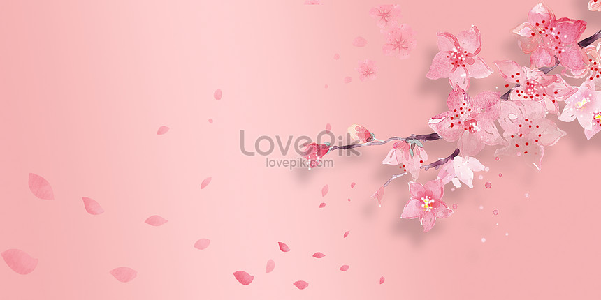aesthetic cherry blossom background
