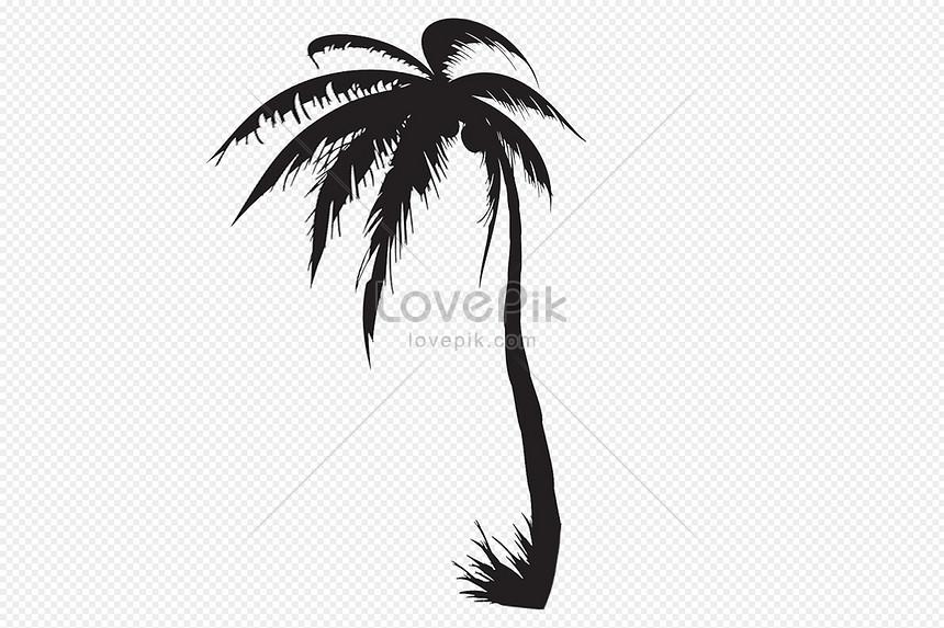 ภาพเงาของต้นปาล์ม png