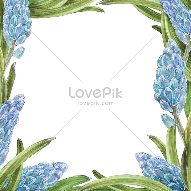 spring hyacynth flower frame with watercolor