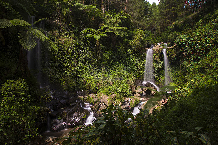 waterfall in the natural green forest