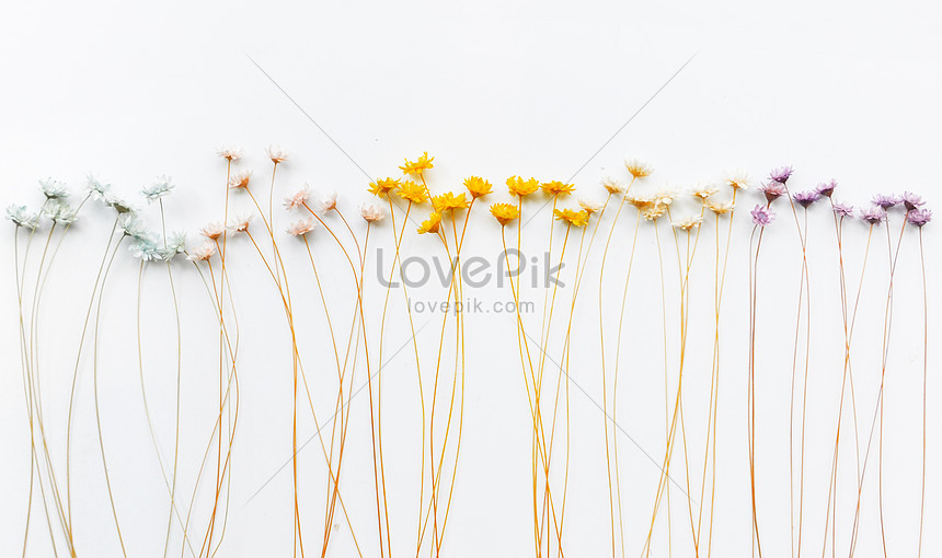 small floral wallpaper background