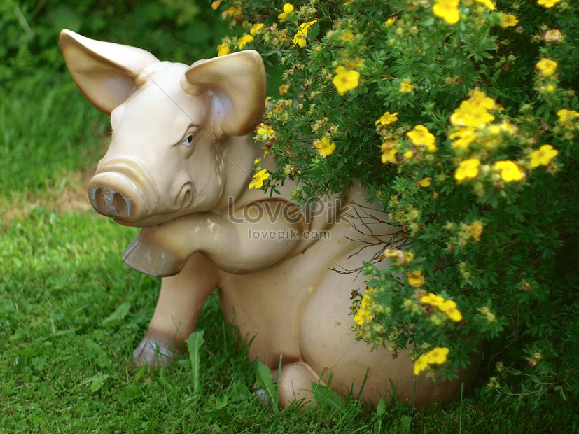 A Statue Of A Pig In The Garden