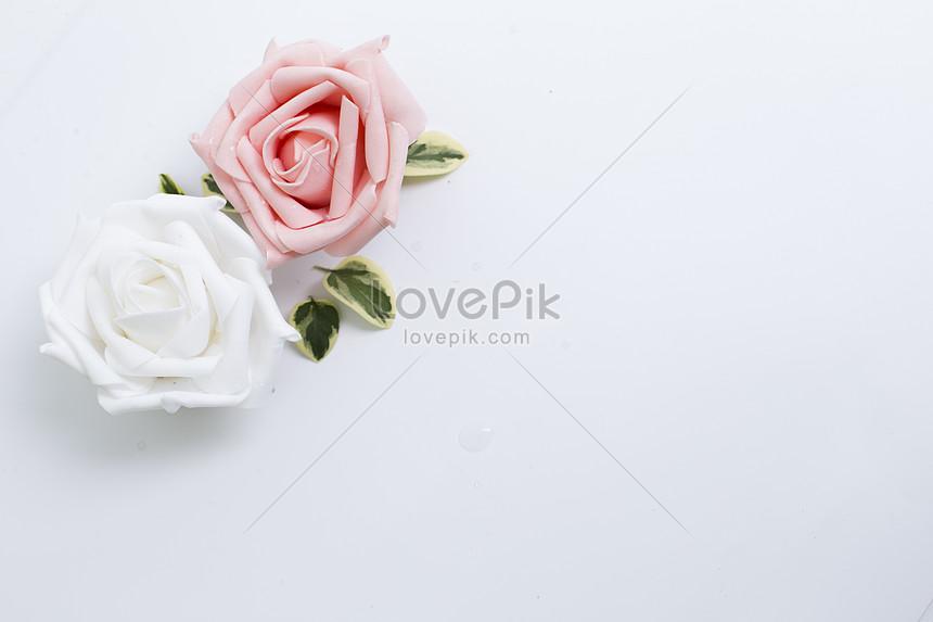 Lovepik صورة Jpg 500143219 Id صورة فوتوغرافية بحث صور زهور على خلفية بيضاء