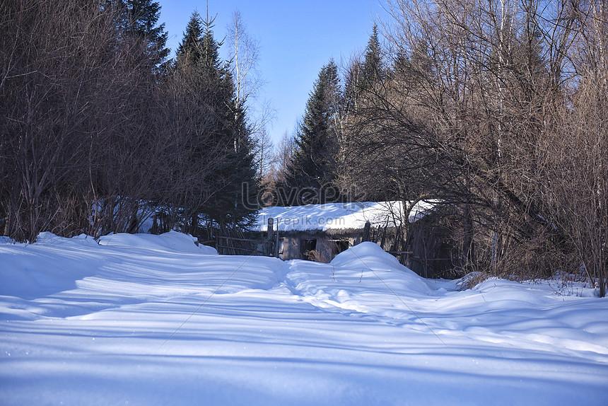 Snow Scene Photo Image Picture Free Download 500219442 Lovepik Com