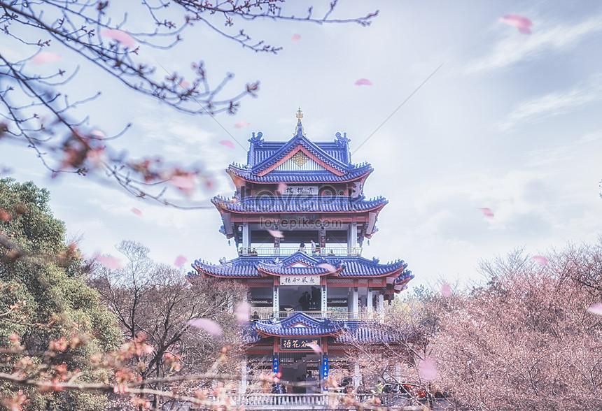 japanese cherry blossom pavilion