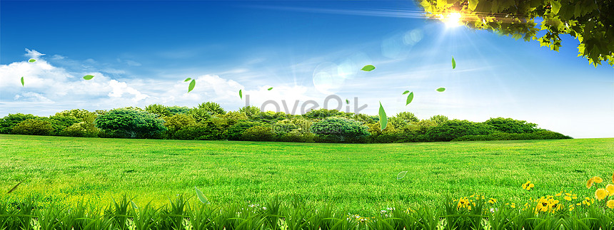 Banner High Definition Big Picture Background Backgrounds