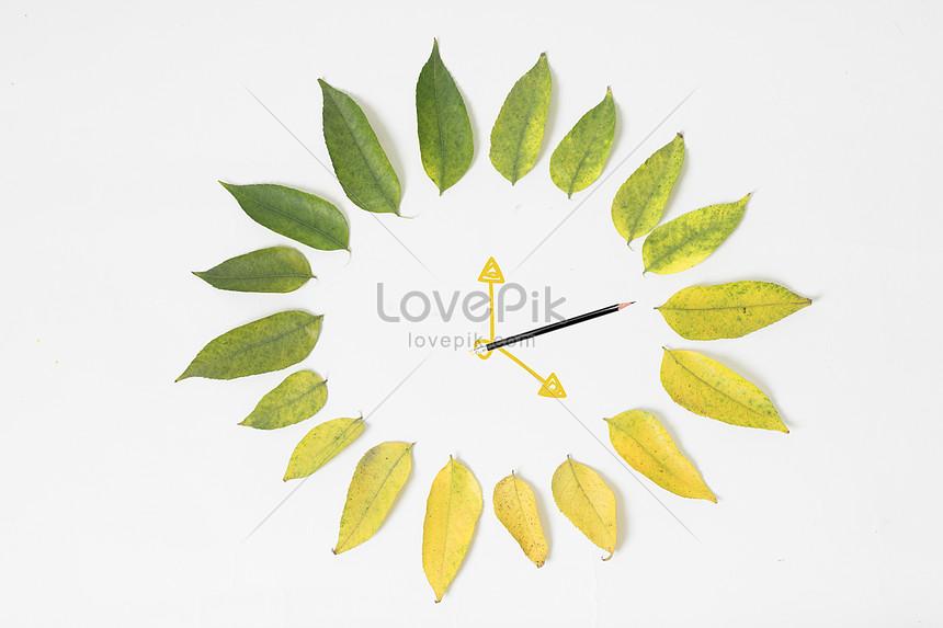 монро часы из листьев картинки всегда одежде, которая