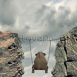 The elephant swings on the swing jpg