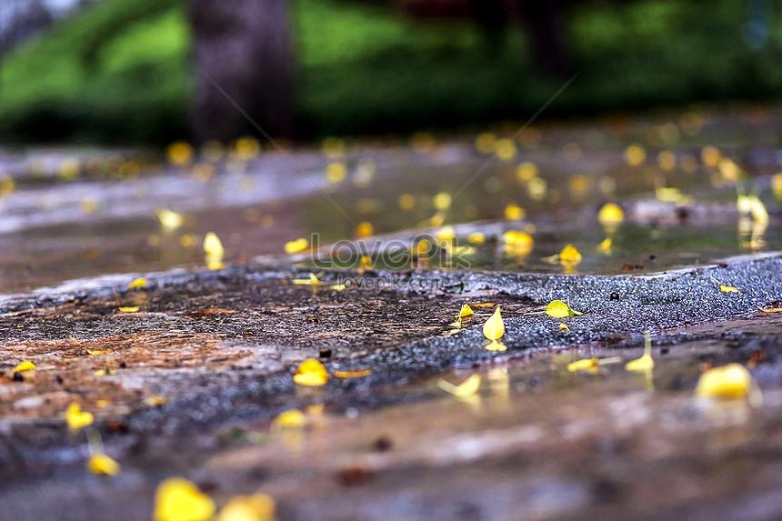 54 Gambar Pemandangan Hujan Paling Bagus