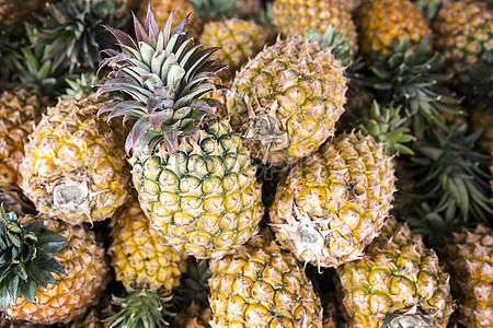 Taiwan pineapple jpg