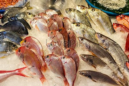 Taiwan freshwater seafood market jpg