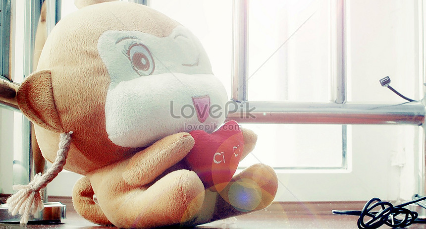 Love yoyo monkey photo image_picture free download