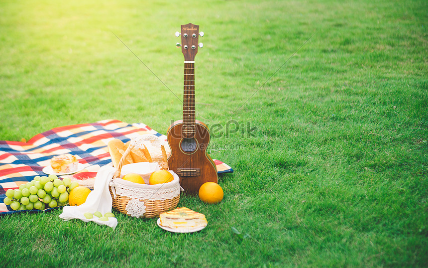 outdoor picnic on the grass