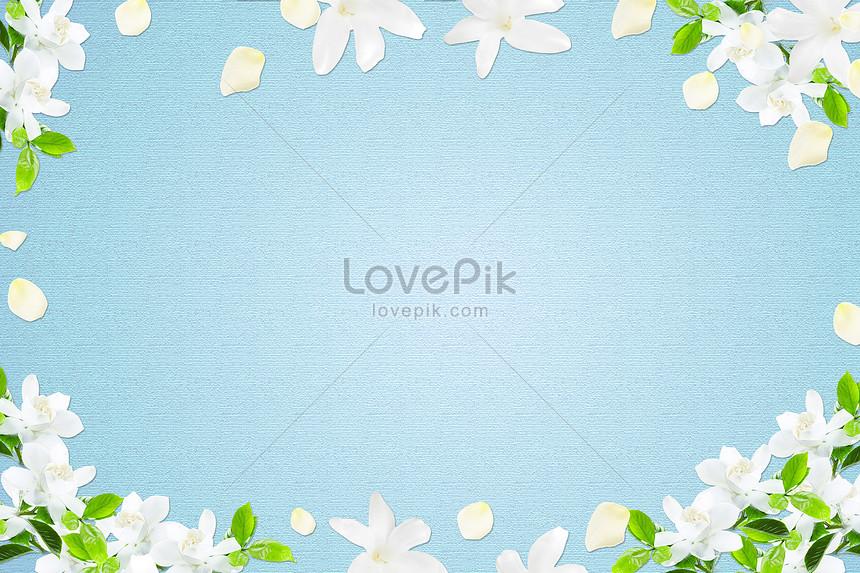 Bunga Putih Berpose Dengan Latar Belakang Biru Gambar Unduh Gratis