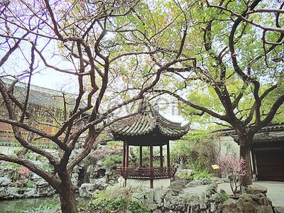 Shanghai yu garden photo image_picture free download ...
