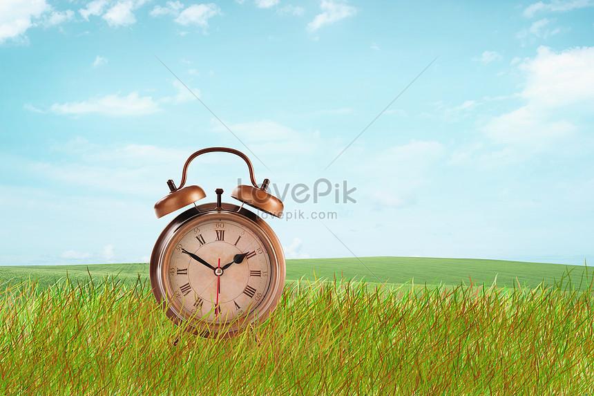 meadow alarm clock