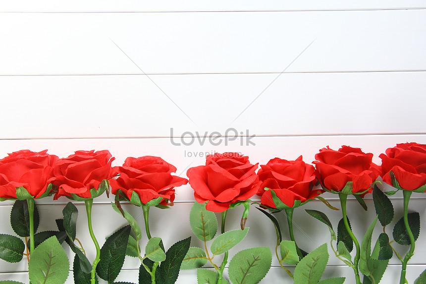 sevgililer günü kırmızı gül