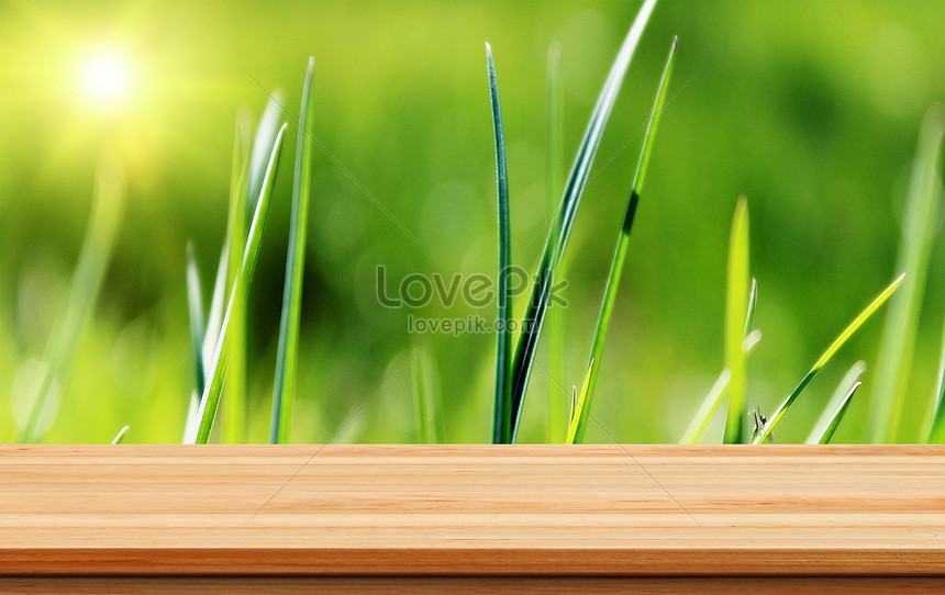 tabletop background in spring