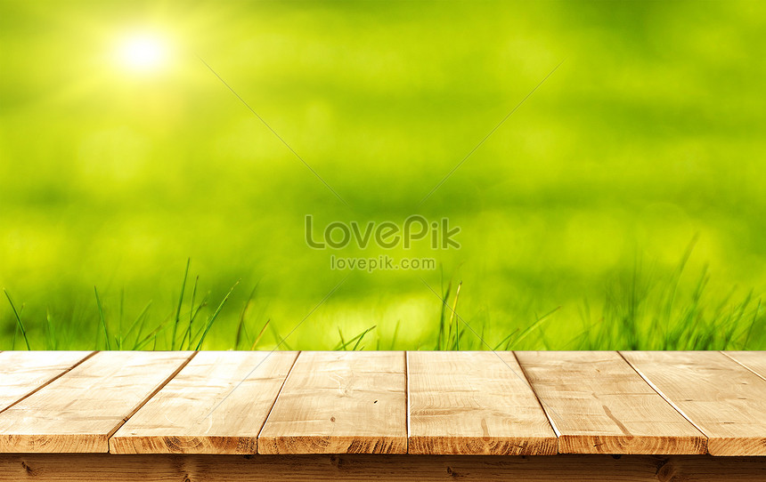 Primavera Sfondo Del Desktop Immagine Gratisfoto Numero