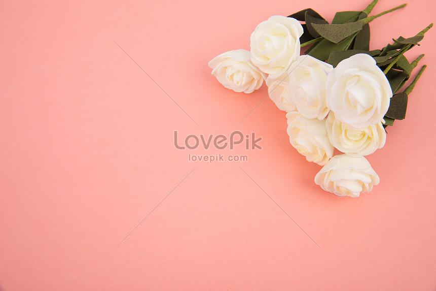 Những Bông Hoa Màu Hồng Trong Nền Hình ảnh định Dạng Hình