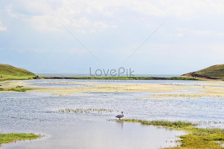 swan lake xinjiang