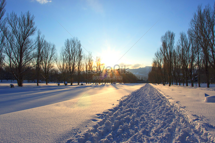 snow scenery in winter