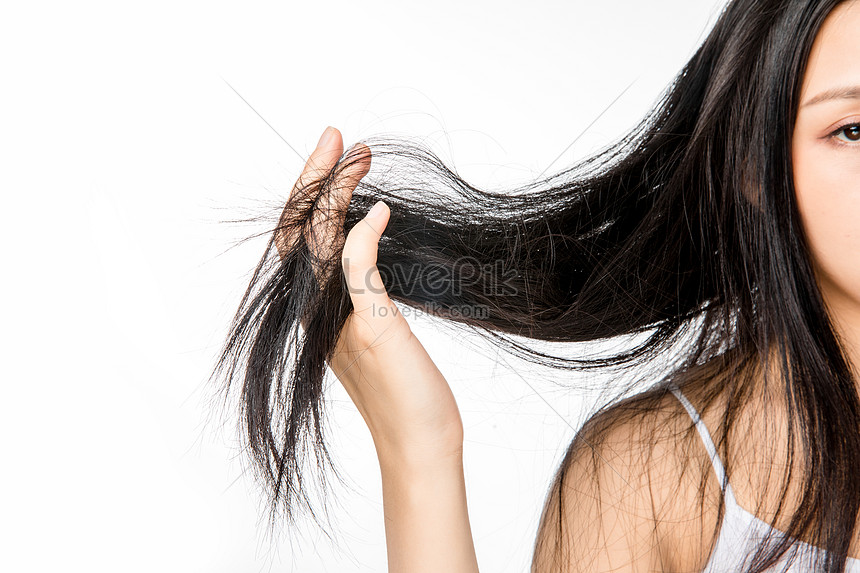 Female Hair Loss Hair Photo Image Picture Free Download 501354515 Lovepik Com