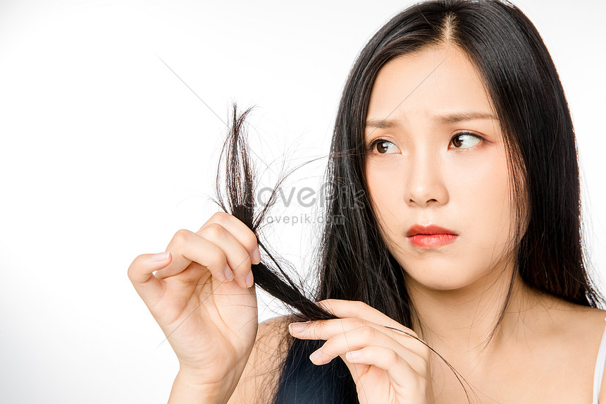 Female Hair Loss Hair Photo Image Picture Free Download 501354516 Lovepik Com