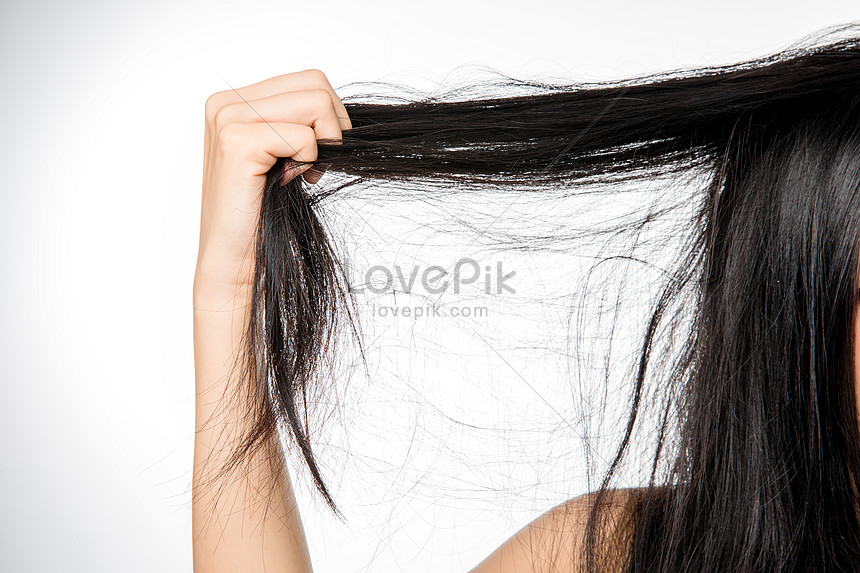Female Hair Loss Hair Photo Image Picture Free Download 501354517 Lovepik Com