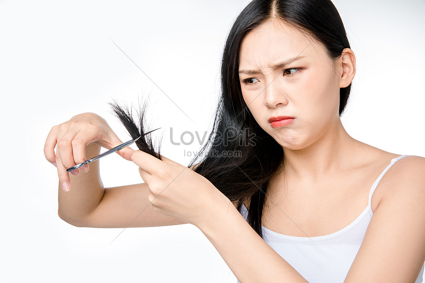 Female Hair Loss Hair Photo Image Picture Free Download 501354520 Lovepik Com