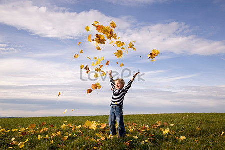Boy scatters leaves in the air jpg