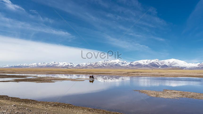 xinjiang swan lake nature reserve