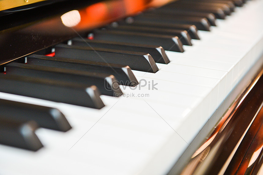 Piano Keyboard Photo Image Picture Free Download 501646899 Lovepik Com